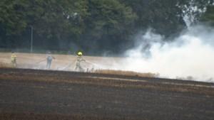 Video: Stoppelveld afgebrand, rookwolken over snelweg A2