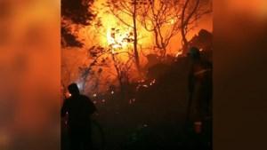 Video: Nederlanders in het nauw door grote bosbranden aan Turkse kust