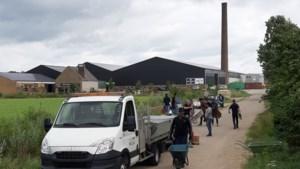 Islamitische organisatie en gezin uit Oudenbosch schieten te hulp bij opruimen zandzakken in Buggenum