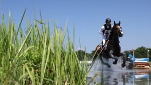 Zwitserse ruiter moet paard laten inslapen na zware valpartij