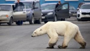 Staatssecretaris: andere landen moeten klimaatambitie verhogen, Rutte noemt rapport 'zeer zorgelijk'