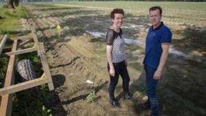 Plan crematorium Nederweert uitgebreid met natuurbegraafplaats