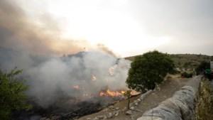 Bosbranden in Zuid-Italië eisen levens