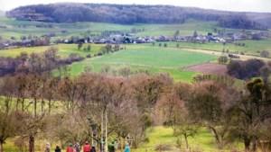 Failliet IKL Limburg maakt doorstart