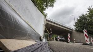 Algen en roet verwijderd, verfraaien 'oerlelijke' A76-viaducten in Stein begonnen