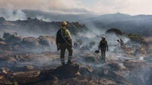 Evacuaties door bosbranden in Spanje en Griekenland