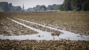 Overheidsloketten voor vergoeding schade hoogwater gaan maandag open