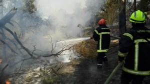 Gezocht: Limburgse vakantiegangers op campings in door bosbranden geteisterd Zuid-Frankrijk