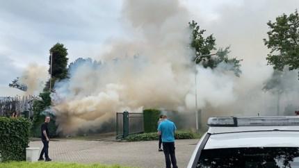 Video: Bestrijden van onkruid gaat mis, haag en boom vliegen in brand