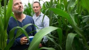 Boer Mayco en dierenactivist Servé in discussie over de bio-industrie: 'We eten vooral babyvlees, hè?'