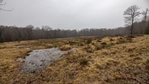 Natuurontwikkeling in Schutterspark Brunssum loopt vertraging op