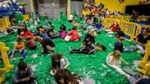 Jubilerende clubs zetten samen lego- en postzegelbeurs op touw in Geleen