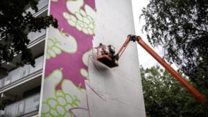 Fruit verbindt Heerlen met Detroit: voorlaatste mural XXL Gallery in de maak
