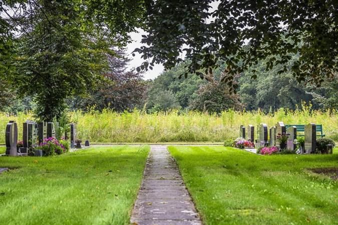 Het insectenparadijs op de begraafplaats in Reuver kan niet iedereen bekoren, maar het gaat voorlopig niet plat