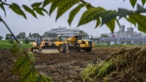 Maastricht legt werk bulldozerende megaloods-zakenman stil, of toch niet?