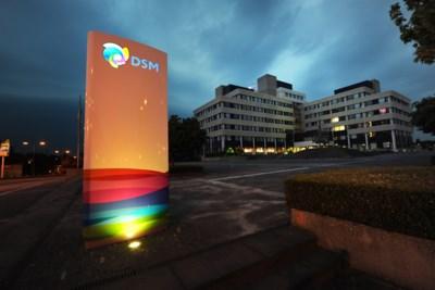 DSM lijft Amerikaans bedrijf in smaakmakers in