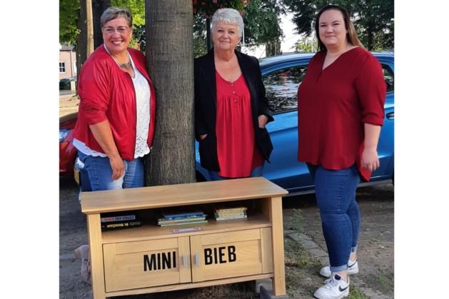PvdA plaatst minibieb in Susteren tegen laaggeletterdheid
