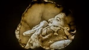 Tefaf Online presenteert bijna 700 kunstwerken, van pareltjes uit Versailles tot een wonderlijke afdruk van een penis