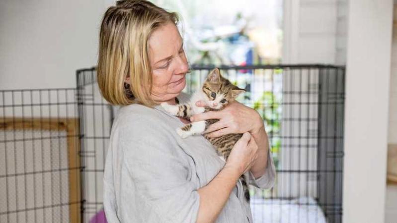 Deze katten wachtte eigenlijk een spuitje, maar Arianne besloot ze te redden