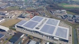 Dassen moeten naar nieuwe burcht verkassen vanwege bouw logistiek centrum in Heerlen