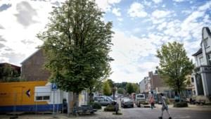 Markante kastanje in het centrum van Bocholtz wordt gekapt