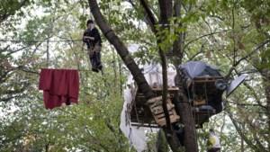 Blamage voor CDU-kandidaat Armin Laschet: slopen boomhutten voor bruinkoolgroeve was illegaal