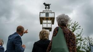 Stein heeft nu zijn eigen Manneke Pis: hondje 'plast' ondeugend vanaf tien meter hoog op het gepeupel