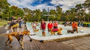Vrijwilligers mogen zwembaden Roerdalen runnen in 2022