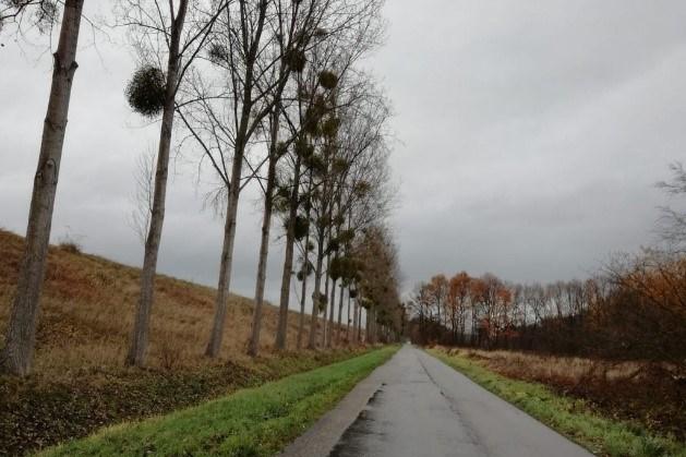 Werkzaamheden aan de Oostelijke Kanaalweg bij Elsloo en Broekhoven in Geulle