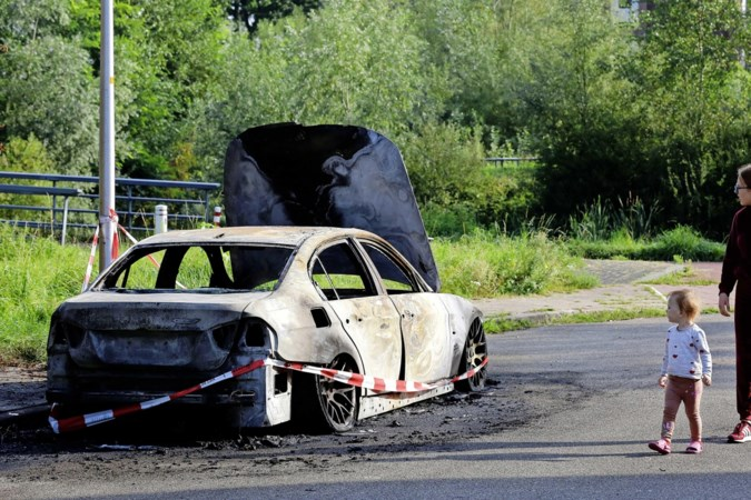 Ontzetting in Ede na serie van twintig autobranden in één nacht