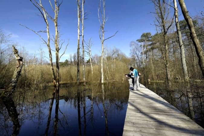 Brunssum wil visie voor Schutterspark door burgers laten aanscherpen