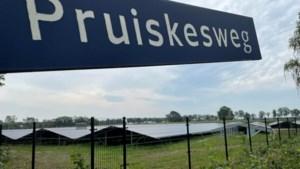 CDA Weert zet vraagtekens bij de wijze waarop een zonneweide in Altweerterheide aangelegd wordt en wil vastomlijnde regels
