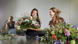 Studenten leren in de beroepspraktijk bij tuincentrum bijStox in Roermond