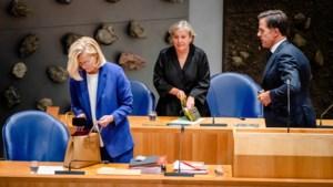 Commentaar: Hoe hoog is het 'plucheplakkers'-gehalte van Sigrid Kaag en Mark Rutte?