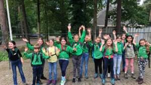 Welpenstaf Scouting Sint Franciscus zoekt versterking