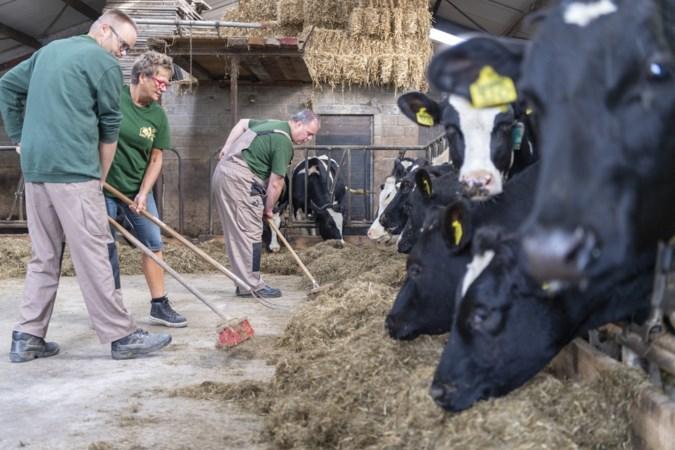 Op nieuwe dagbesteding in Schinnen werken cliënten mee op de boerderij en mogen ze zelf hun plek bouwen