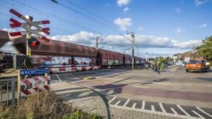 Boa in burger betrapt trucker op rijden door rood, maar rechter verscheurt bon