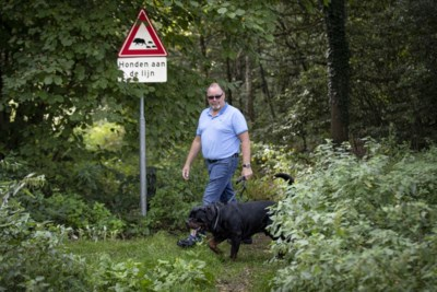 Wandelaars aangevallen door wilde zwijnen: buurtbewoners durven het bos niet meer in