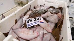 Nederlandse visserij op de woelige baren