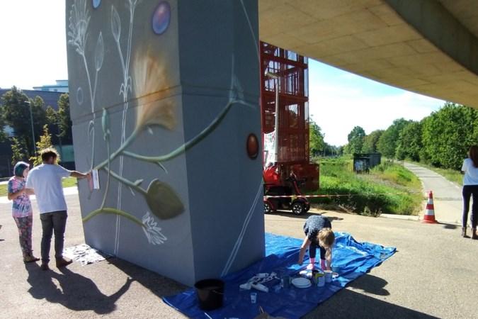 Murals op pijlers Noorderbrug zetten aan  tot discussie over een duurzame wereld