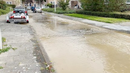 Waterlekkage in Maastricht: woningen ontruimd