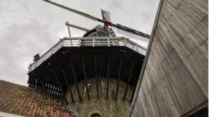 Gratis activiteiten op meer dan veertig locaties door heel de provincie tijdens Limburgse Molendag