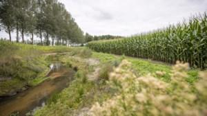 LLTB: Boeren in de knel door 'kalenderlandbouw' van overheid