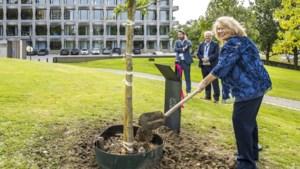 Kunstmatige intelligentie uit Heerlen berekent de overlevingskansen bij borst- en longkanker