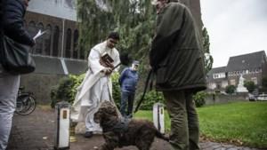 Huisdierenzegening in Sittard: 'Die hond snapt er niks van'