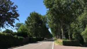 Wittemer Allee vooruitlopend op reconstructie al aangepast om veiligheid van fietsers te vergroten