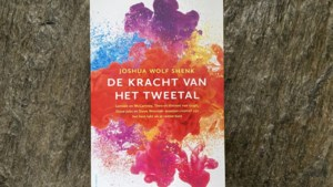Rob Meesen's Ondernemersboek van de week /  'De kracht van het tweetal'
