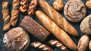 Ambachtelijk brood bij Gebroeders Niemeijer: terug naar de basis