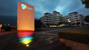 Commentaar: een onthutsend inzicht in de onderhandelingen over de verhuizing van DSM naar Maastricht