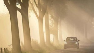 Code geel: KNMI waarschuwt voor dichte mist